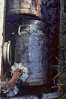 Europe/France/Auvergne/15/Cantal/env de Mandailles: Vallée de Mandailles, Buron , bidon de lait et brosse dans une  fontaine