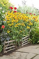 Summer border at Great Dixter with Black-eyed Susan (rudbeckia) and dahlias