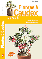 Livre, Plantes à Caudex, éditions Ulmer, texte & photos Hervé Lenain