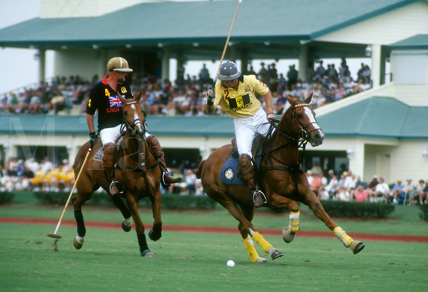 Polo competition.