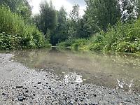 Ueber die Ufer getretener Erfelder Altrhein bei der Zufahrt zur Kandel - Suedhessen 15.07.2021: Hochwasser am Rhein des suedhessischen Ried