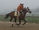 Friesan Fire and Larry Jones on Friday morning at Pimlico