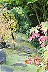 Man Made Trail in Back Yard  Private garden professionally landscaped.