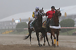 May 16, 2015: Tale of Verve and his jockey, Joel Rosario, are  pelted by rain during the Preakness post parade at Pimlico Race Course in Baltimore, MD.  Joan Fairman Kanes/ESW/CSM