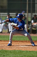 February 26, 2010:  Outfielder Javi Torres of the Seton Hall Pirates during the Big East/Big 10 Challenge at Raymond Naimoli Complex in St. Petersburg, FL.  Photo By Mike Janes/Four Seam Images