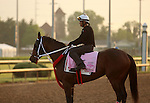 LOUISVILLE, KY - APRIL 27: Paola Queen (Flatter x Kadira, by Kafwain) stand on the track at Churchill Downs with exercise rider J.J. Delgado preparing for the Kentucky Oaks. Owner Grupo 7C Racing Stable, trainer Gustavo Delgado. (Photo by Mary M. Meek/Eclipse Sportswire/Getty Images)