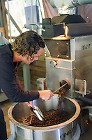 Business owner Kaleo emptying roasted coffee beans from roaster, Kaleo's Koffee, Hamakua area, Big Island.