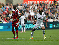 Pictured: Wayne Routledge of Swansea (R) celebrating his goal, making the score 2-0 to his team. Saturday 30 August 2014<br /> Re: Premier League, Swansea City FC v West Bromwich Albion at the Liberty Stadium, south Wales, UK