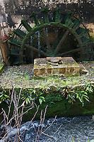 Europe/France/Aquitaine/24/Dordogne/Grand-Brassac: Moulin de Rochereuil  utilisé pour la fabrication de l'huile de noix - La roue du moulin est en bois située sur le flanc gauche du moulin