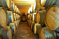 Prieure de St Jean de Bebian. Pezenas region. Languedoc. Barrel cellar. France. Europe.