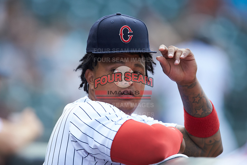 Yermin Mercedes (27) of the Charlotte Hornets during the game against the Louisville Bats at BB&T BallPark on June 22, 2019 in Charlotte, North Carolina. The Hornets defeated the Bats 7-6. (Brian Westerholt/Four Seam Images)