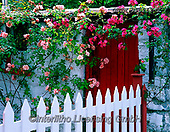 Tom Mackie, LANDSCAPES, LANDSCHAFTEN, PAISAJES, FOTO, photos,+6x7, color, colorful, colour, colourful, County Clare, door, doors, Eire, EU, Europa, flower, flowers, horizontal, horizontal+s, Ireland, Irish, medium format, picket fence, red, rose, roses, white,6x7, color, colorful, colour, colourful, County Clare+door, doors, Eire, EU, Europa, flower, flowers, horizontal, horizontals, Ireland, Irish, medium format, picket fence, red, r+ose, roses, white+,GBTM990252-2,#L#, EVERYDAY ,Ireland