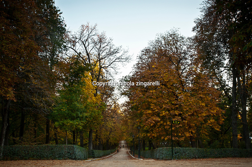 Madrid, park of el retiro, people walking in one of the avenues in fall