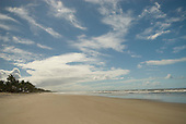 Ilheus, Bahia State, Brazil. Southern beaches. Wide expanse of sea and sand with scudding clouds, palm trees.