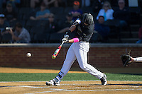 Gavin Sheets (24) of the Wake Forest Demon Deacons follows through on his swing against the Florida State Seminoles at David F. Couch Ballpark on April 16, 2016 in Winston-Salem, North Carolina.  The Seminoles defeated the Demon Deacons 13-8.  (Brian Westerholt/Four Seam Images)