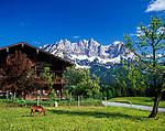 Austria, Tyrol, near Going am Wildem Kaiser: farmhouse and Wilder Kaiser mountains | Oesterreich, Tirol, bei Going am Wildem Kaiser: Bauernhof vorm Wilden Kaiser