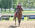 September 05, 2020: Step Dancer ridden by Dylan Davis trained Barclay Tagg in 4th Race on New York Bred Stakes day at Saratoga Race Course in Saratoga Springs, New York. Rob Simmons/CSM