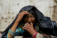 On the way to Lhasa from Namtso Lake, Nomads getting ready for the winter, shearing sheep as this old women looking on