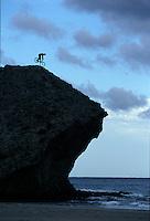 Martyn Ashton endo on big rock on beach . pic copyright Steve Behr / Stockfile