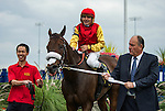 TORONTO, ON - OCTOBER 16: Southern Ring #6, ridden by Eurico Rosa DaSilva, wins the Ontario Fashion S. at Woodbine Racetrack on October 16, 2016 in Toronto, ON. (Photo by Sophie Shore/Eclipse Sportswire/Getty Images)
