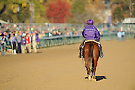 Scenes from Day 1 of the Breeders' Cup at Churchill Downs in Louisville, KY  on 11/04/11. (Ryan Lasek / Eclipse Sportwire)