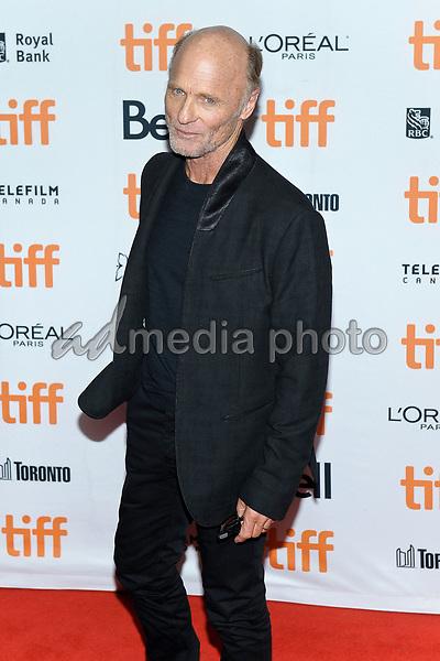 "10 September 2017 - Toronto, Ontario Canada - Ed Harris. 2017 Toronto International Film Festival - ""mother!"" Premiere held at TIFF Bell Lightbox. Photo Credit: Brent Perniac/AdMedia"