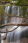 Waterfall, Sierra Nevada, California