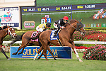 March 28, 2015: Imagining with Irad Ortiz Jr up wins the Pan American Stakes (G3T) at Gulfstream Park, Hallandale Beach (FL). Arron Haggart/ESW/CSM