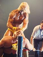 Hulk Hogan & Vader 1992<br /> Photo By John Barrett/PHOTOlink