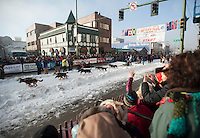 Dog teams leave the starting line at the ceremonial start of the 2014 Iditarod Dogsled Race in downtown Anchorage, Alaska. Sixty-nine mushers paraded their teams through Anchorage today and will depart from the official start in Willow tomorrow to begin the 975-mile race to Nome.
