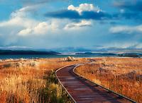 Wooden walkway to Mono Lake, California.