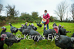 Pam O'Brien who is raising bronze turkeys for Christmas in Douglas, Killorglin