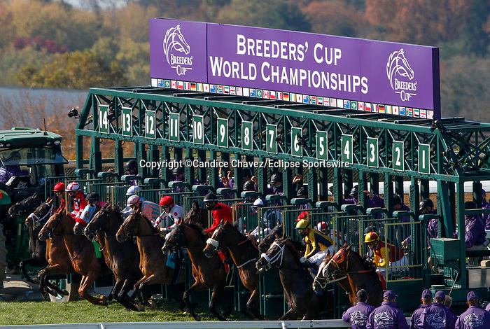 November 7, 2020 : Horses take off at the starting gate for the Turf Sprint on Breeders' Cup Championship Saturday at Keeneland Race Course in Lexington, Kentucky on November 7, 2020. Candice Chavez/Breeders' Cup/Eclipse Sportswire/CSM