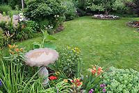 Birdbath in lovely flower and shrub garden with picket fence, lawn grass, lilies, daylilies, black eyed susans, raised beds with specimen tree, amaranthus bright foliage, sedum, goatsbeard, shrubs mixture.