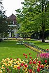 Deutschland, Bayern, Oberbayern, Berchtesgadener Land, Bad Reichenhall:  im Koeniglichen Kurpark   Germany, Bavaria, Upper Bavaria, Berchtesgadener Land, Bad Reichenhall: Royal Spa Gardens