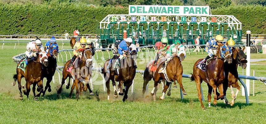 True Test winning at Delaware Park on 9/13/12
