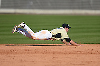 Central Florida Knights infielder Tommy Williams (14) attempting to make a diving stop during a game against the Siena Saints at Jay Bergman Field on February 16, 2014 in Orlando, Florida.  UCF defeated Siena 9-6.  (Mike Janes/Four Seam Images)