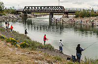 Riverbanks crowded with salmon fishermen, Anchorage, Alaska, USA.