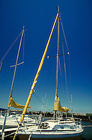 Sailing Masts with sailboats and a blue sky .  May not be used in an elementary school dictionary. Cleveland Ohio USA.