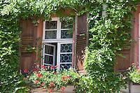 Europe/Allemagne/Bade-Würrtemberg/Heidelberg: Hotel-Restaurant Die Hirschgasse - détail  de la façade : fenêtre