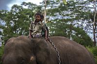 Dubare forest . Elephant<br /> due ragazzi a dorso di un elefante con catene