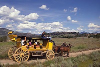 AJ3565, stage coach, Yellowstone National Park, Wyoming, Yellowstone, A yellow stage coach rides through the scenic countryside of Yellowstone National Park at Tower-Roosevelt in the state of Wyoming.