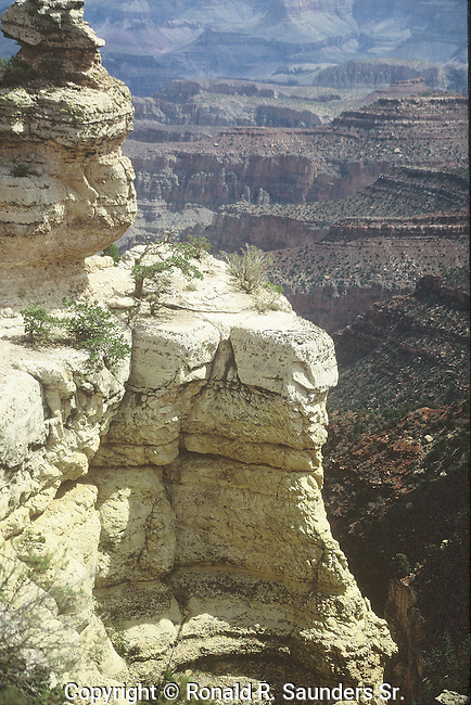 VISTA OF GRAND CANYON