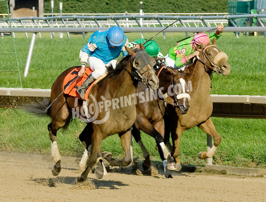 She Be Classy winning The George Rosenberger Memorial Stakes at Delaware Park on 9/10/11.