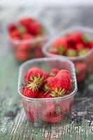 Gastronomie Générale / Diététique :  Fraises Ciflorette  Bio //  General Gastronomy / Dietetics: Strawberries Organic Ciflorette