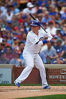 Chicago Cubs second baseman Chris Coghlan (8) at bat during a game against the Milwaukee Brewers on August 13, 2015 at Wrigley Field in Chicago, Illinois.  Chicago defeated Milwaukee 9-2.  (Mike Janes/Four Seam Images)
