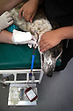 03/07/2016<br />