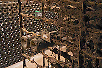 old bottles in the cellar domaine comte senard aloxe-corton cote de beaune burgundy france