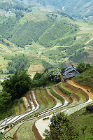 Farm and rice terraces near Sapa North Vietnam