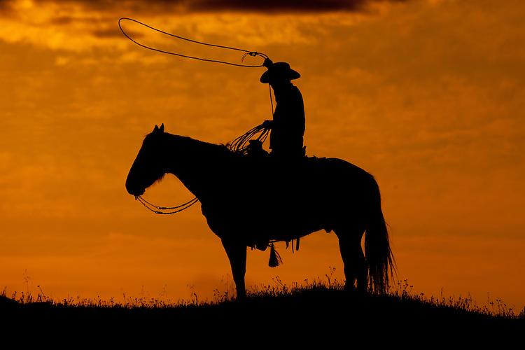 Cowboy sitting atop a horse swinging a lassoo at sunset near Mariposa, California, USA
